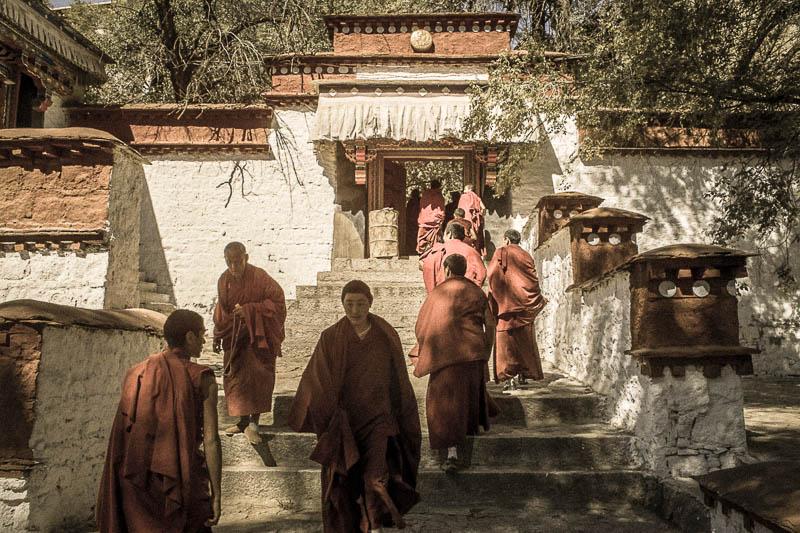 Sera Monastery monks