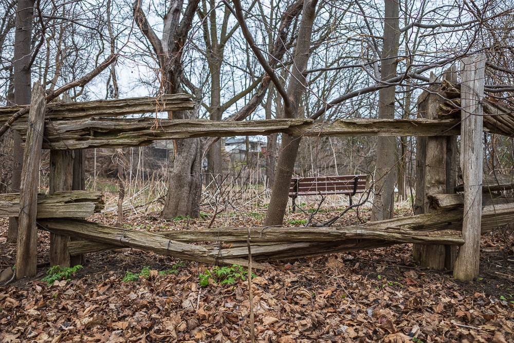 Empty bench inside wooden fence, Spring