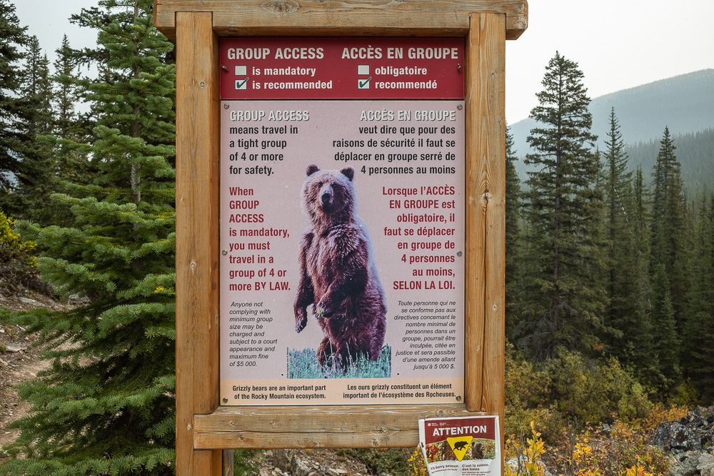 Grizzly bears warning sign