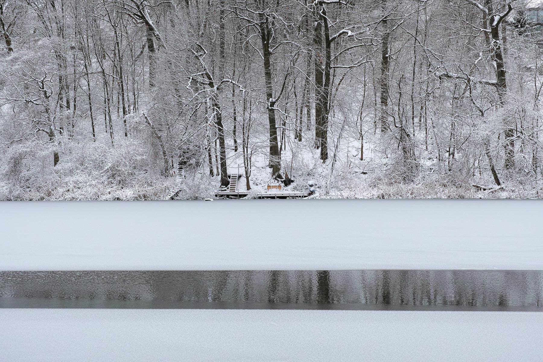 High Park, winter